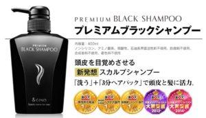 パック型ブラックシャンプー